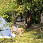 camping-ispagnac-cerisiers2.jpg