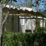camping-ispagnac-cerisiers3.jpg