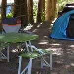 camping-gorgesdutarn3.jpg